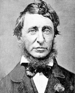 486px-henry_david_thoreau1353864663277.jpg