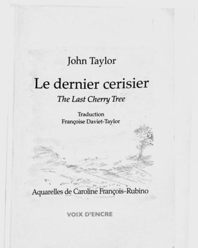 John Taylor, Le dernier cerisier, recension